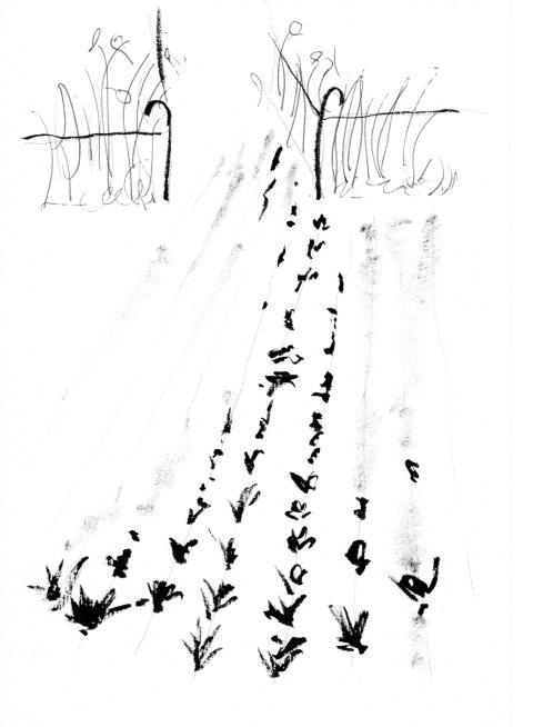 chant de touffes par Kajan (c)