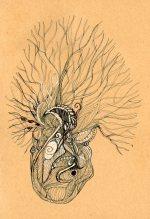 coeur par Kajan(c)