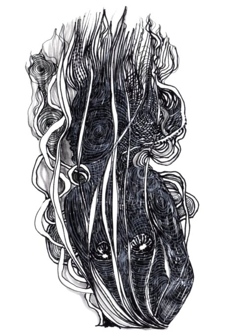 profil en spirales par Kajan(c)