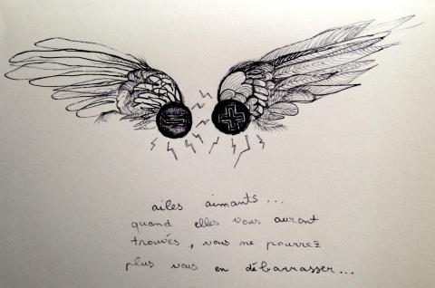 ailes aimants par Kajan(c)