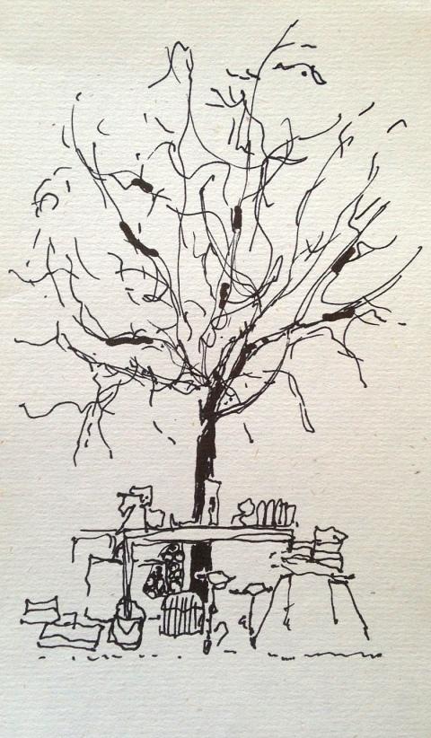 sous l'arbre par Kajan(c)