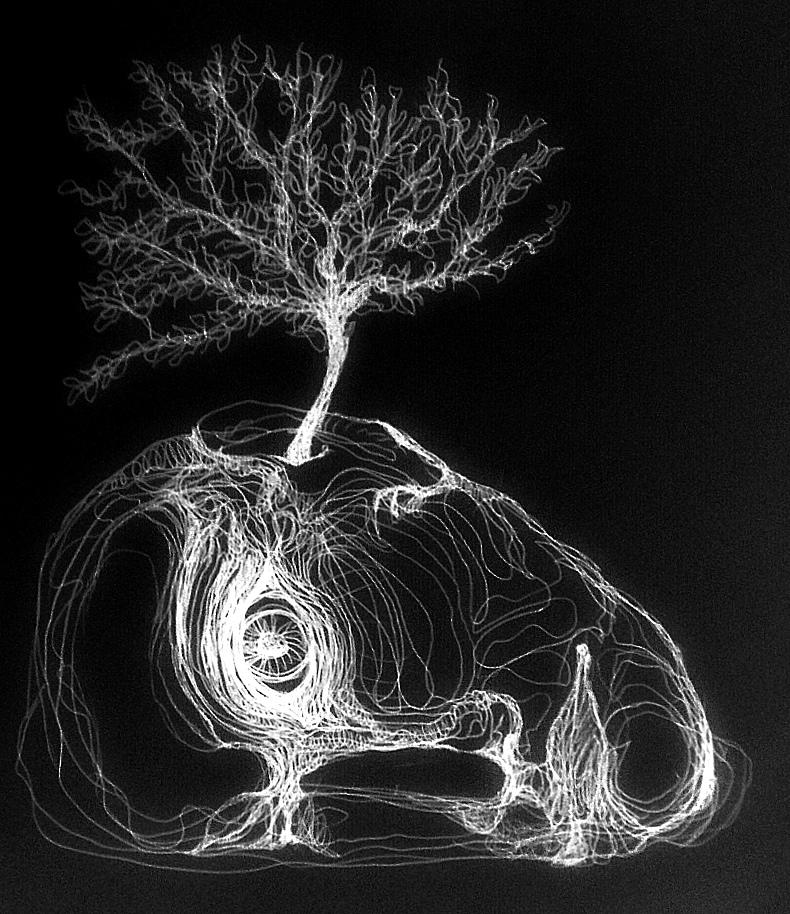 Gravenstein schwarz par Kajan©