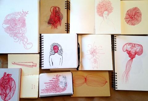 variation rouge en carnets par Kajan(c)
