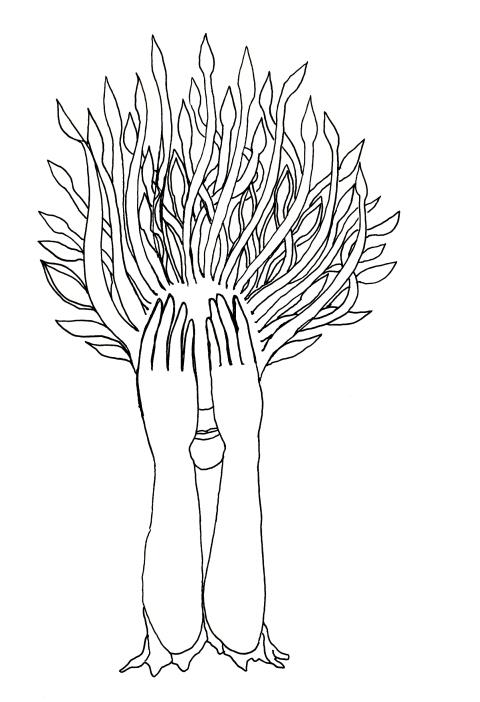 dessin 22avril2016 par Kajan(c)