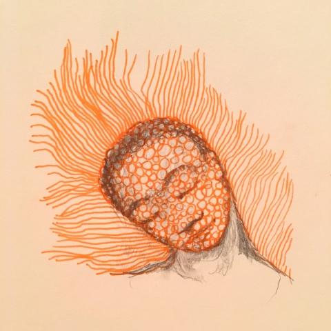 orange-moleculaire-par-kajanc