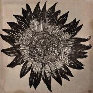 Fleur par Kajan(c)