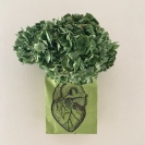 coeur vert par Kajan(c)